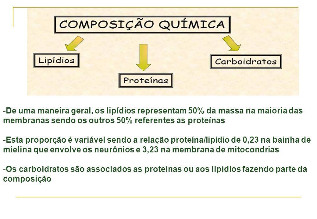 De uma maneira geral, os lipídios representam 50% da massa na maioria das