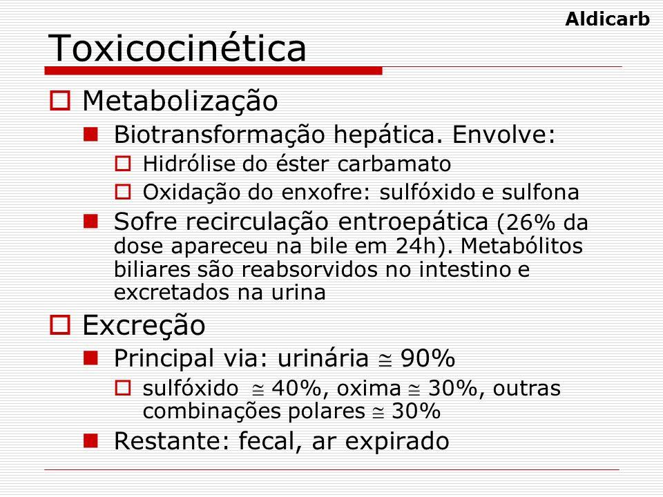 Toxicocinética Metabolização Excreção