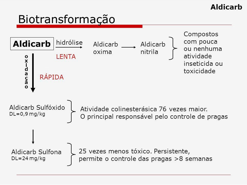 Biotransformação Aldicarb Aldicarb