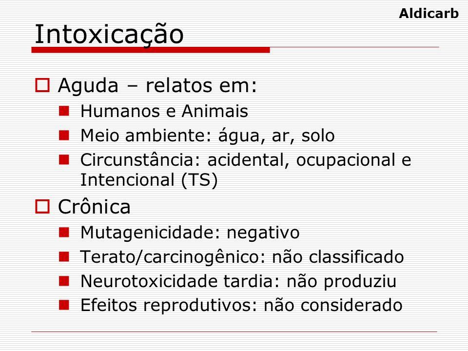 Intoxicação Aguda – relatos em: Crônica Humanos e Animais