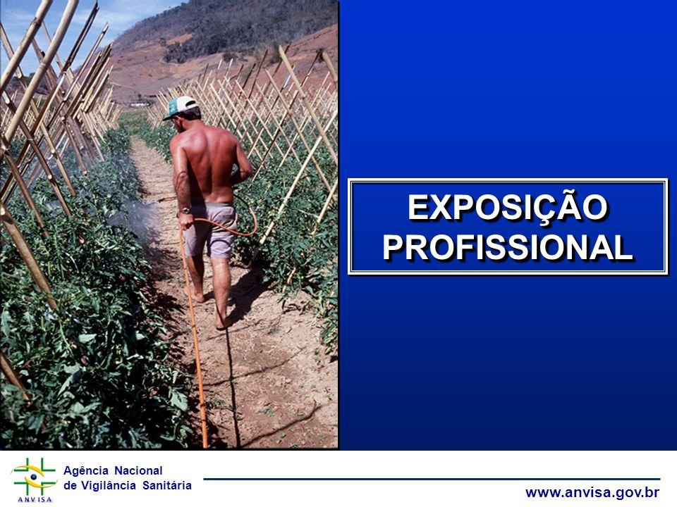 EXPOSIÇÃO PROFISSIONAL