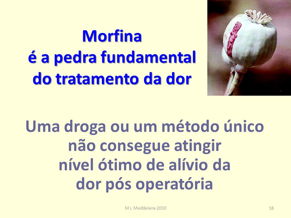 Morfina é a pedra fundamental do tratamento da dor