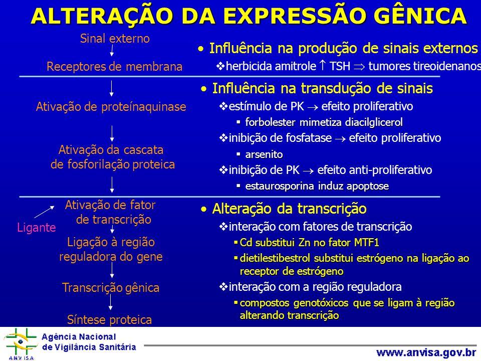 ALTERAÇÃO DA EXPRESSÃO GÊNICA