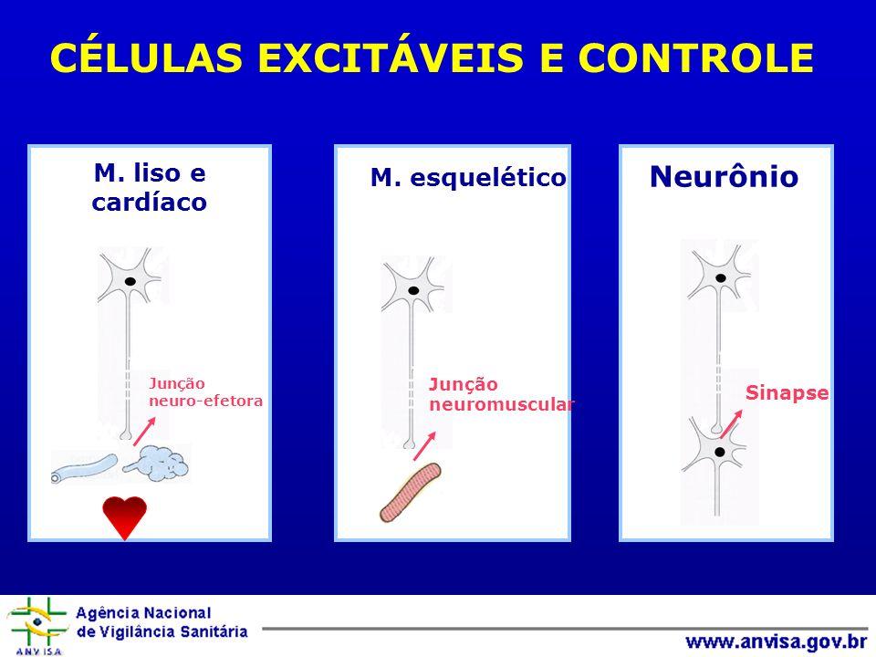 CÉLULAS EXCITÁVEIS E CONTROLE
