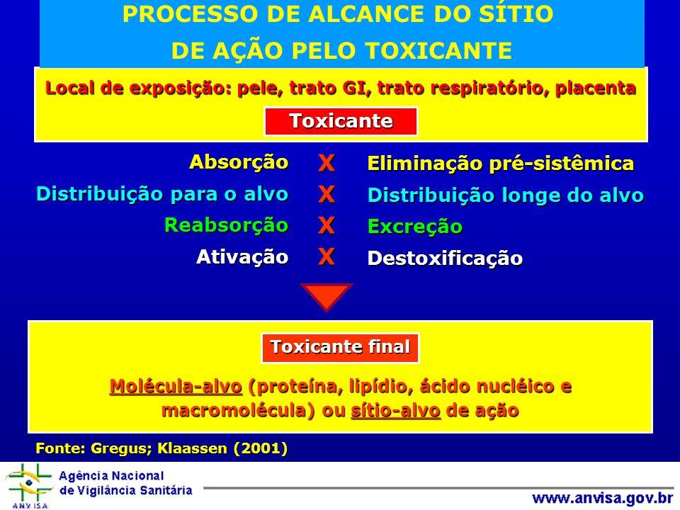 PROCESSO DE ALCANCE DO SÍTIO
