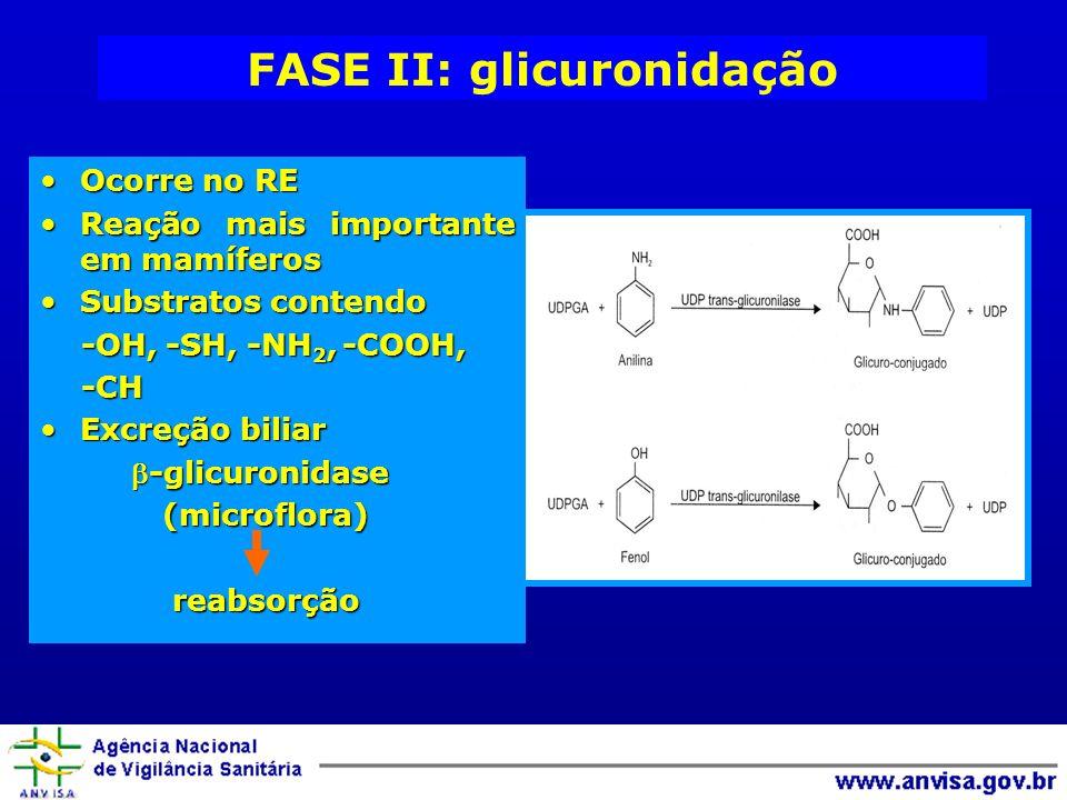 FASE II: glicuronidação