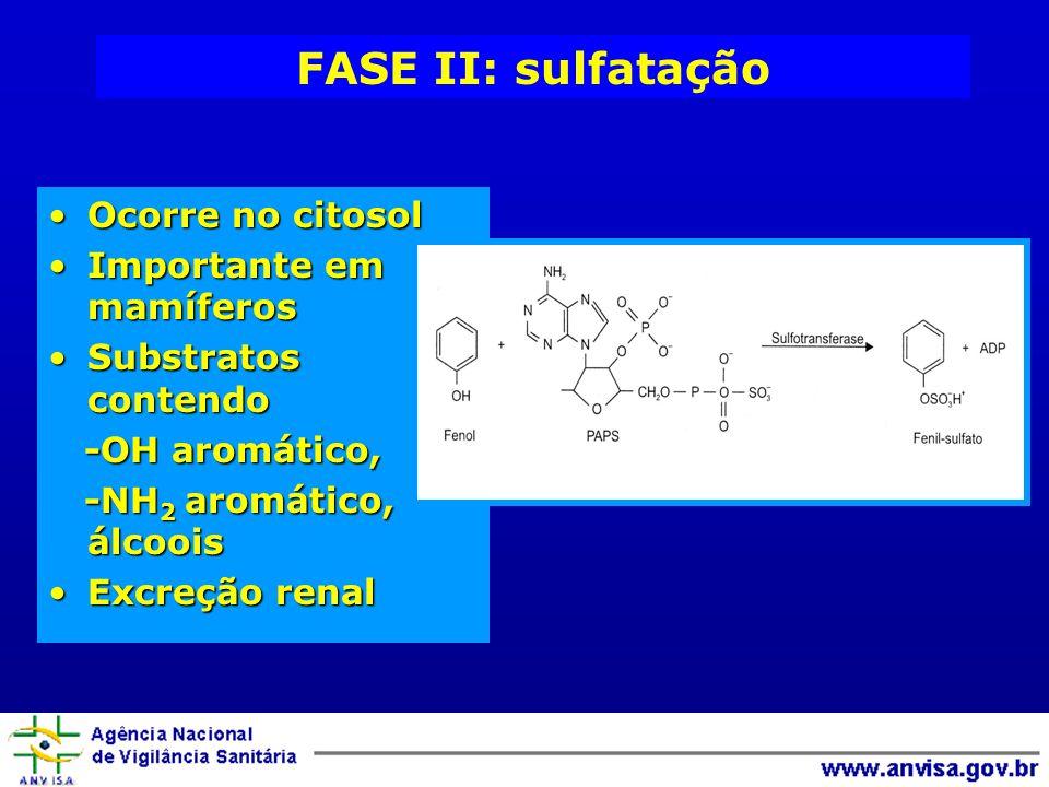 FASE II: sulfatação Ocorre no citosol Importante em mamíferos