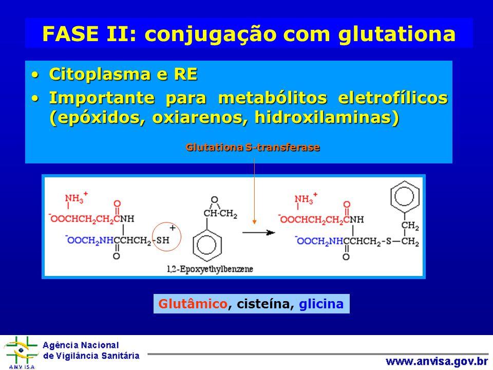 FASE II: conjugação com glutationa
