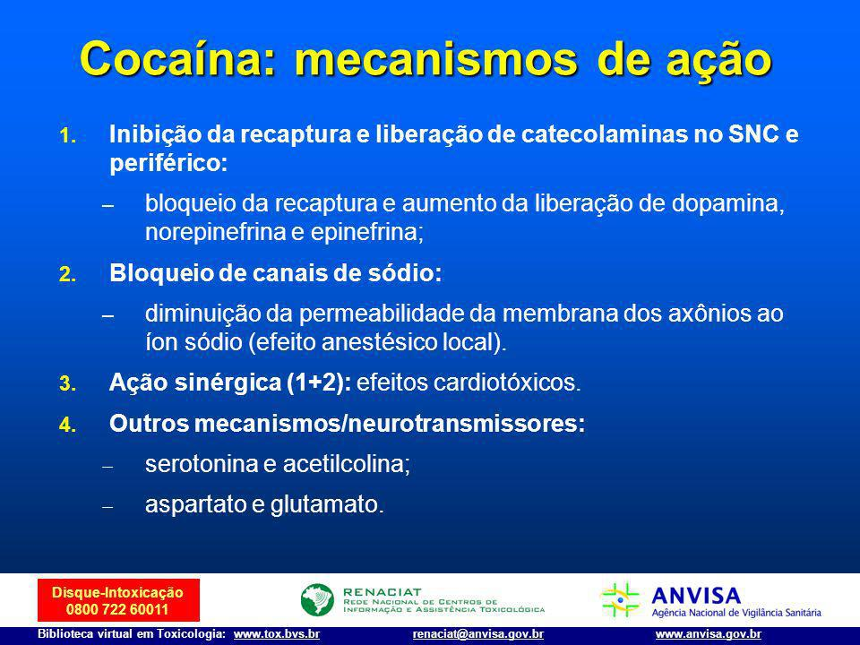 Cocaína: mecanismos de ação