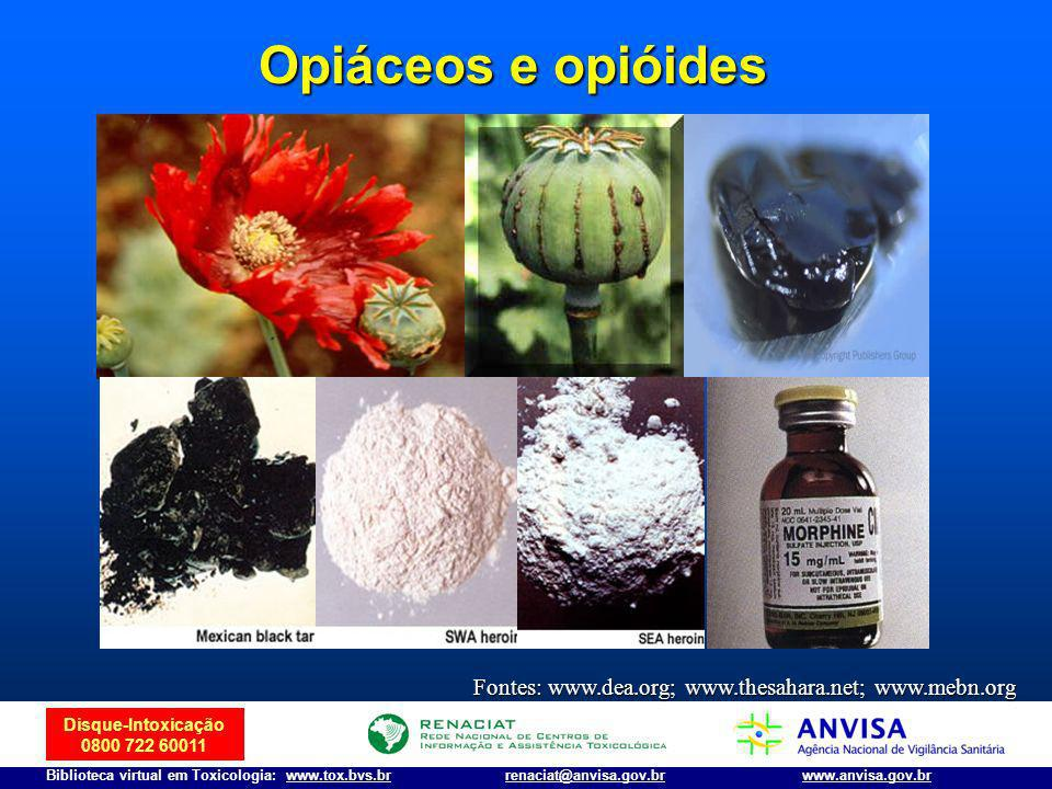 Opiáceos e opióides Fontes: www.dea.org; www.thesahara.net; www.mebn.org