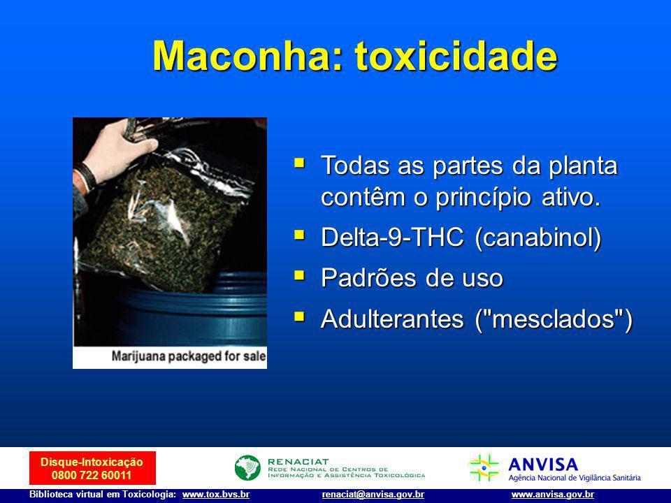 Maconha: toxicidade Todas as partes da planta contêm o princípio ativo. Delta-9-THC (canabinol) Padrões de uso.