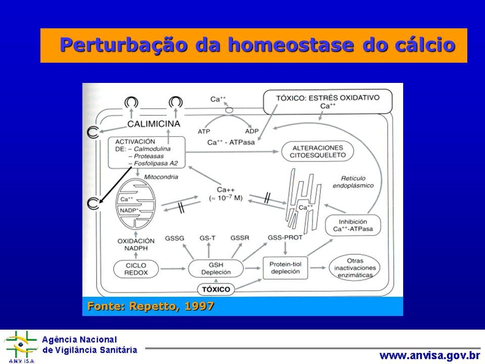 Perturbação da homeostase do cálcio