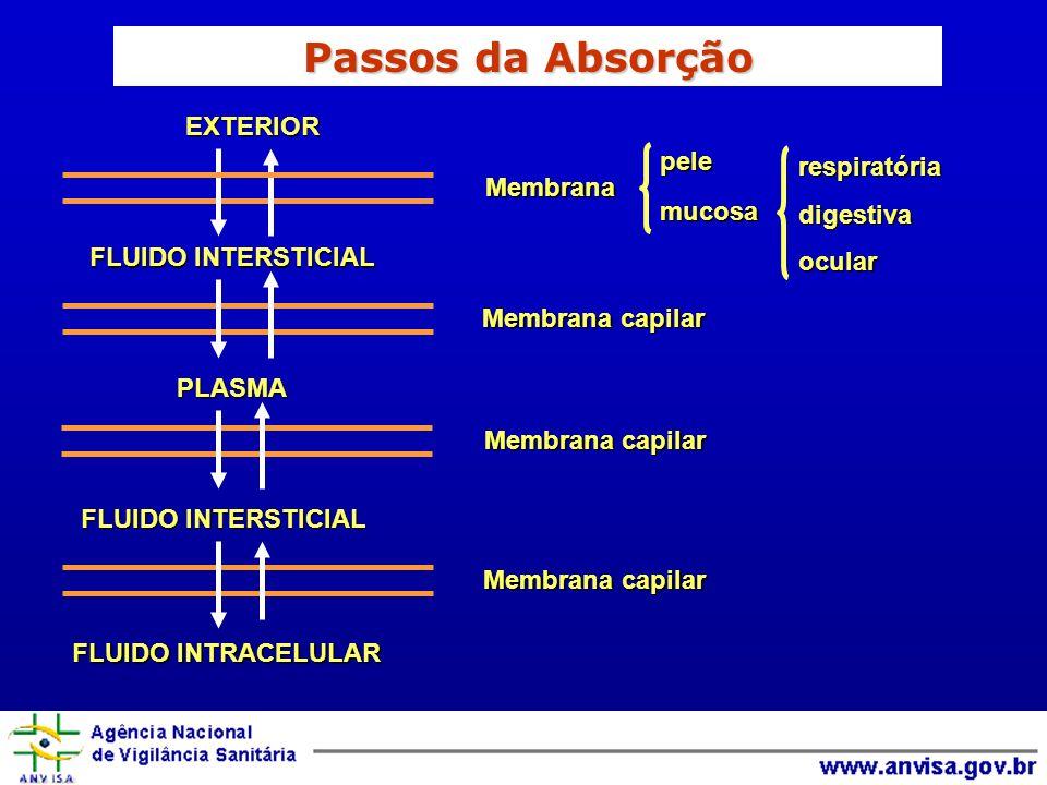 Passos da Absorção EXTERIOR pele respiratória mucosa digestiva