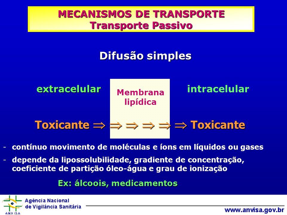 MECANISMOS DE TRANSPORTE Transporte Passivo
