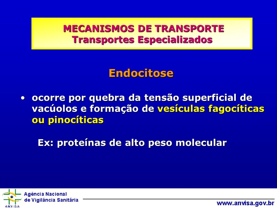 MECANISMOS DE TRANSPORTE Transportes Especializados