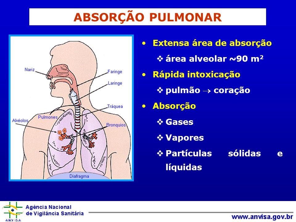 ABSORÇÃO PULMONAR Extensa área de absorção área alveolar ~90 m2