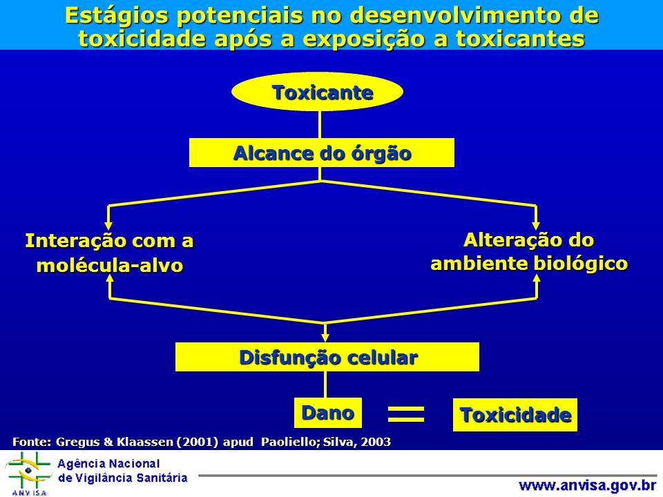 Fonte: Gregus & Klaassen (2001) apud Paoliello; Silva, 2003
