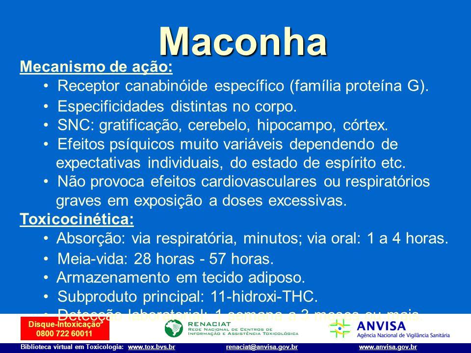 Maconha Mecanismo de ação: