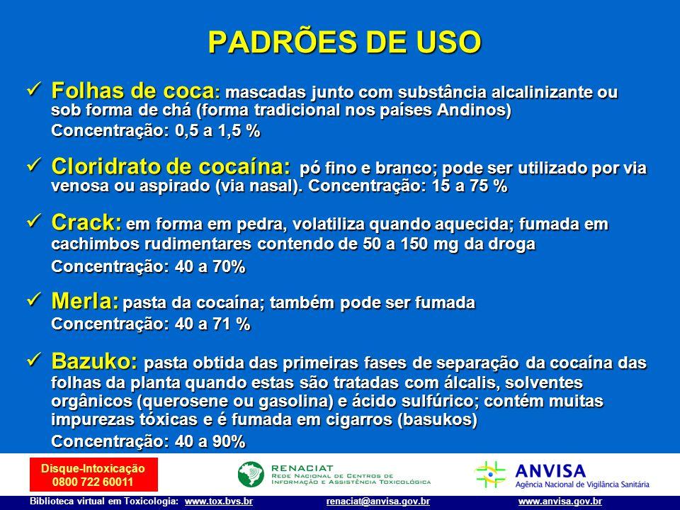 PADRÕES DE USO Folhas de coca: mascadas junto com substância alcalinizante ou sob forma de chá (forma tradicional nos países Andinos)