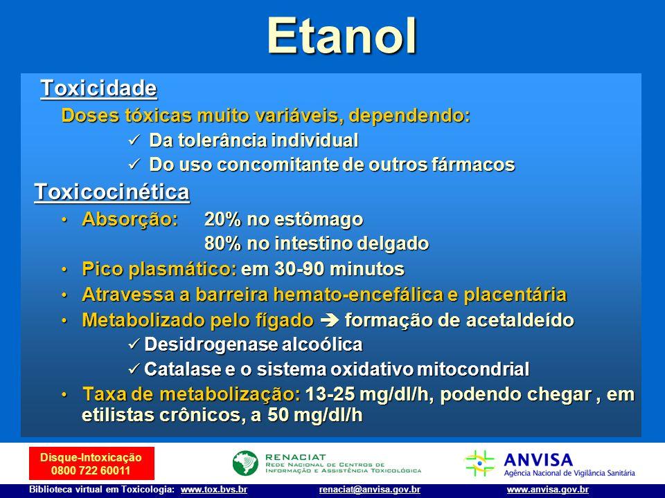 Etanol Toxicidade Toxicocinética