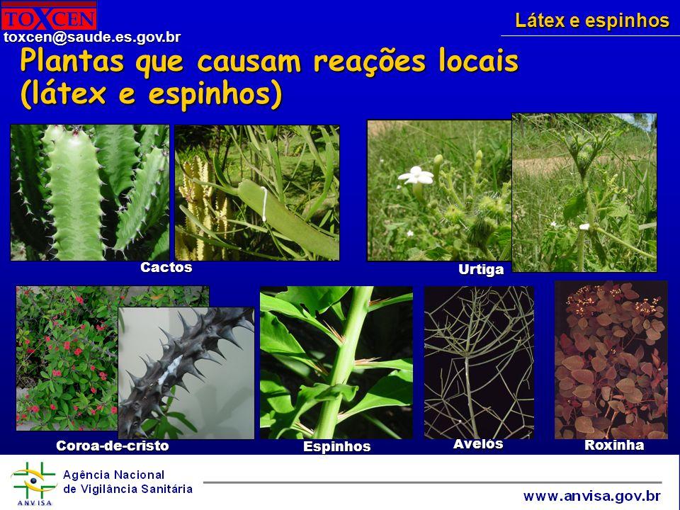 Plantas que causam reações locais (látex e espinhos)