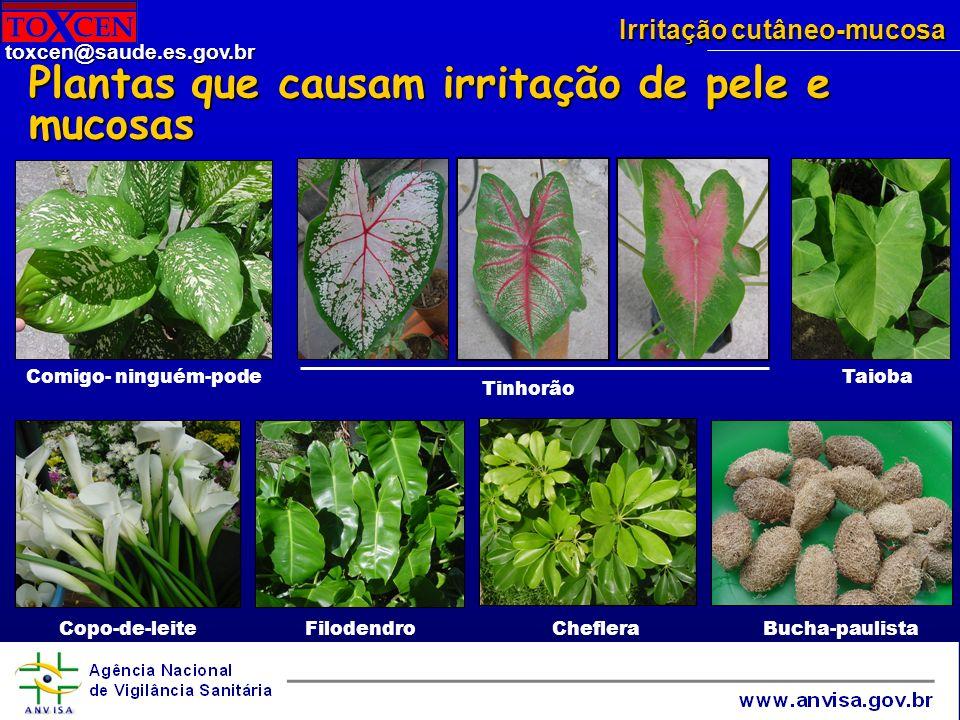 Plantas que causam irritação de pele e mucosas
