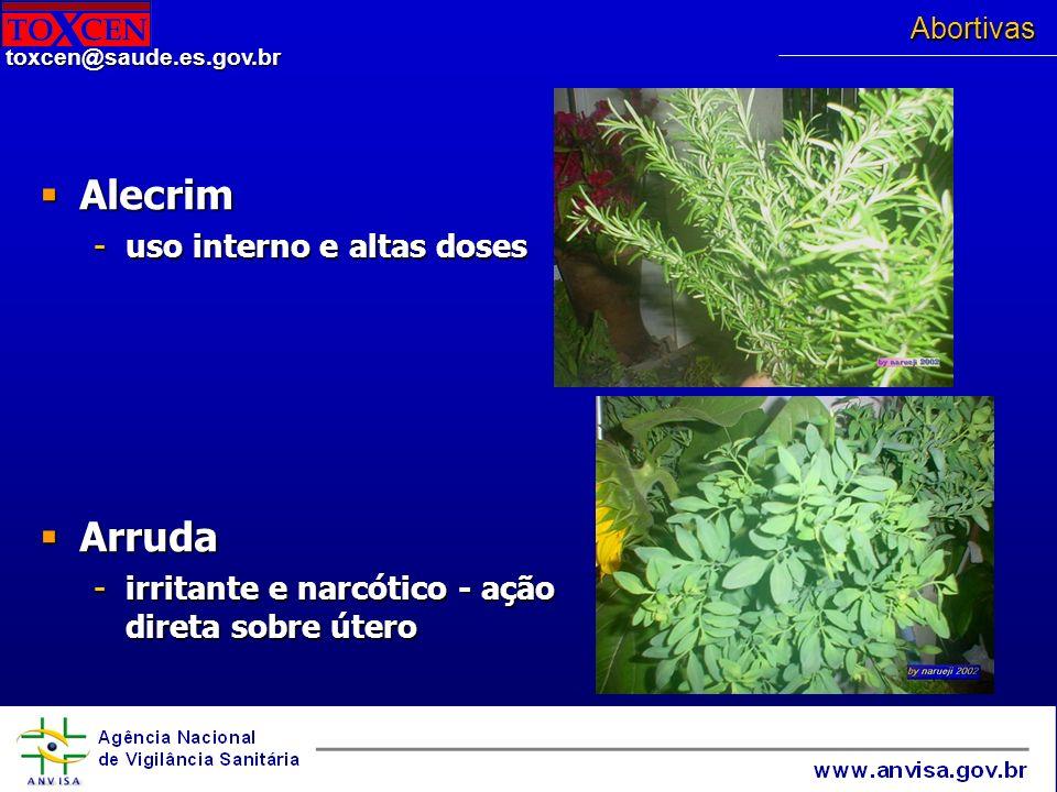 Alecrim Arruda uso interno e altas doses