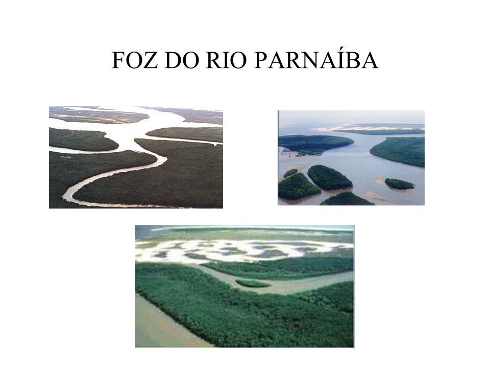 FOZ DO RIO PARNAÍBA
