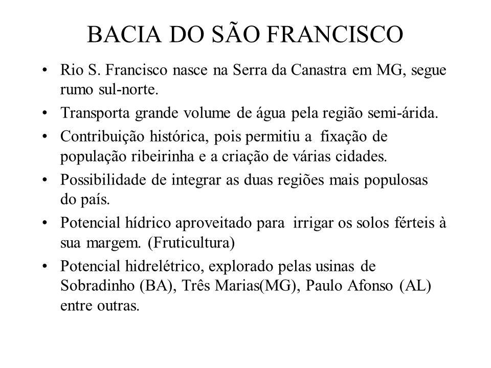 BACIA DO SÃO FRANCISCO Rio S. Francisco nasce na Serra da Canastra em MG, segue rumo sul-norte.