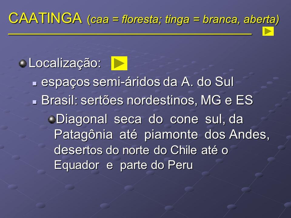 CAATINGA (caa = floresta; tinga = branca, aberta) ______________________________