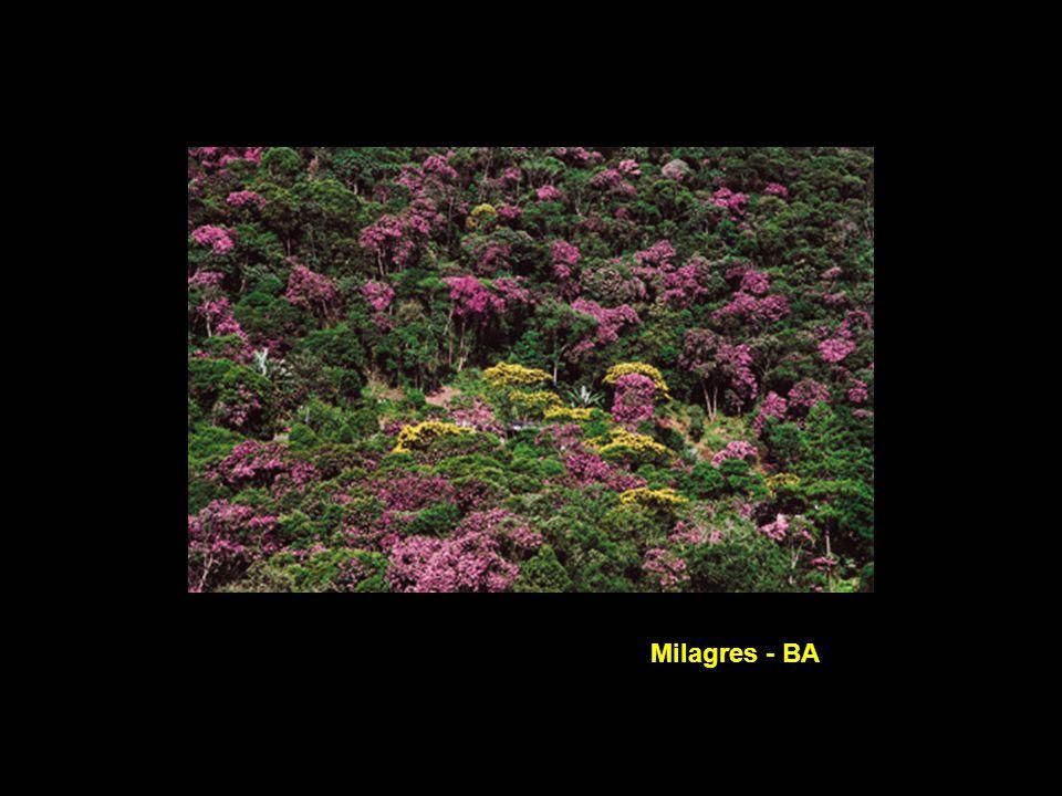 Milagres - BA