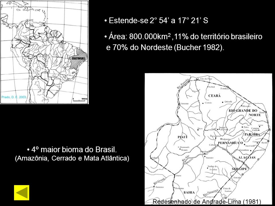 (Amazônia, Cerrado e Mata Atlântica)