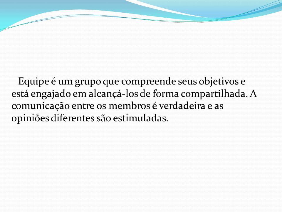 Equipe é um grupo que compreende seus objetivos e está engajado em alcançá-los de forma compartilhada.
