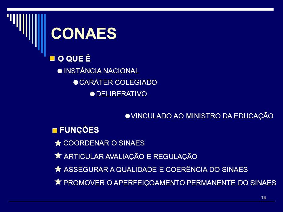 CONAES O QUE É FUNÇÕES INSTÂNCIA NACIONAL CARÁTER COLEGIADO