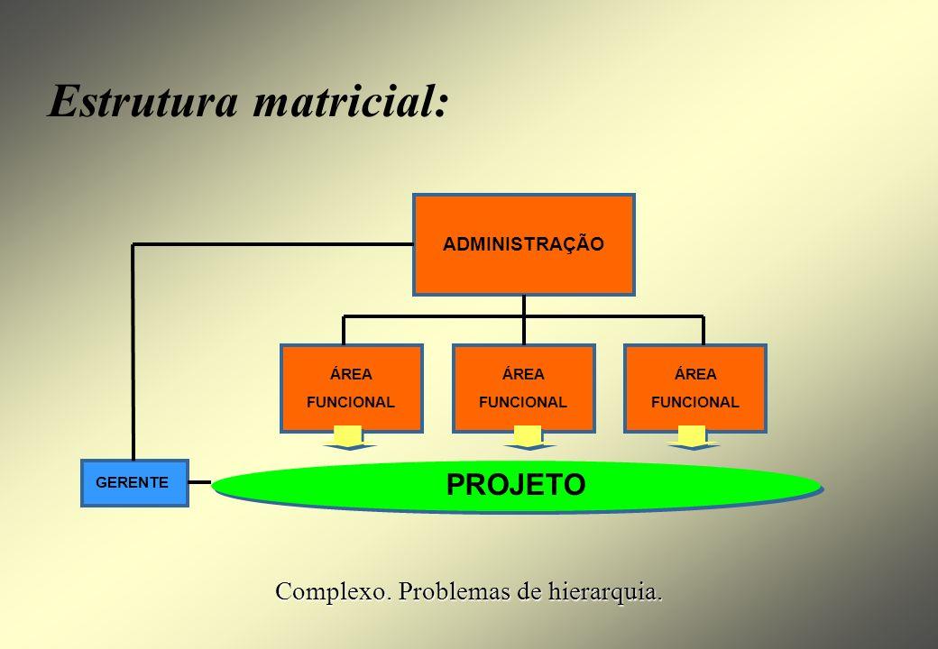 Complexo. Problemas de hierarquia.