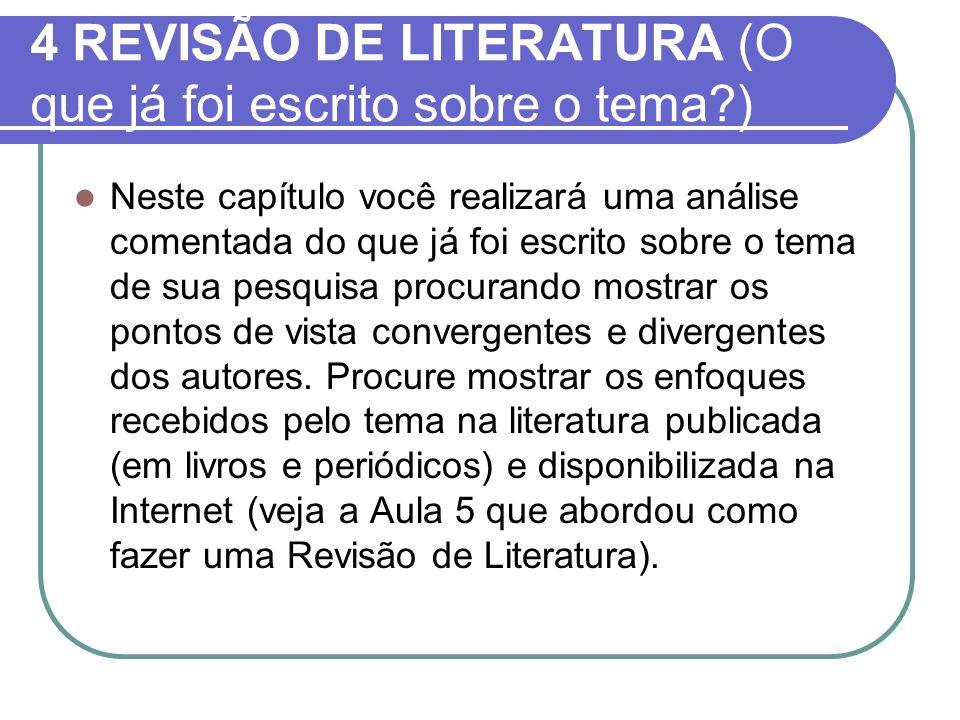 4 REVISÃO DE LITERATURA (O que já foi escrito sobre o tema )