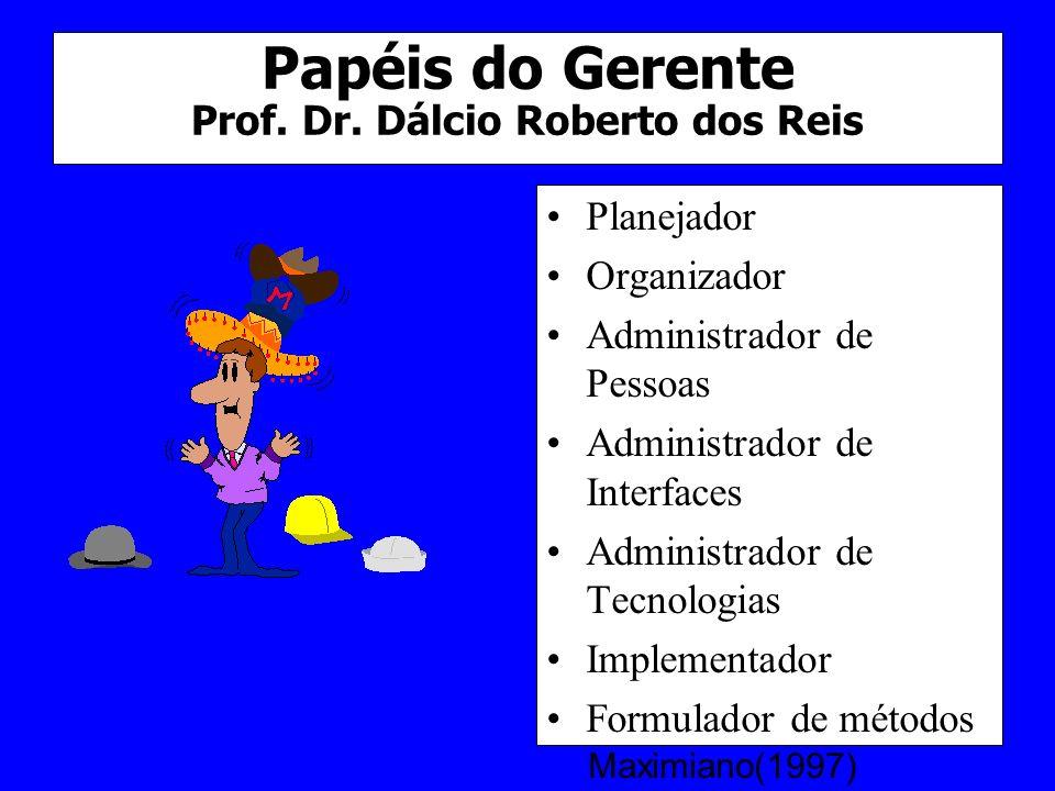 Papéis do Gerente Prof. Dr. Dálcio Roberto dos Reis