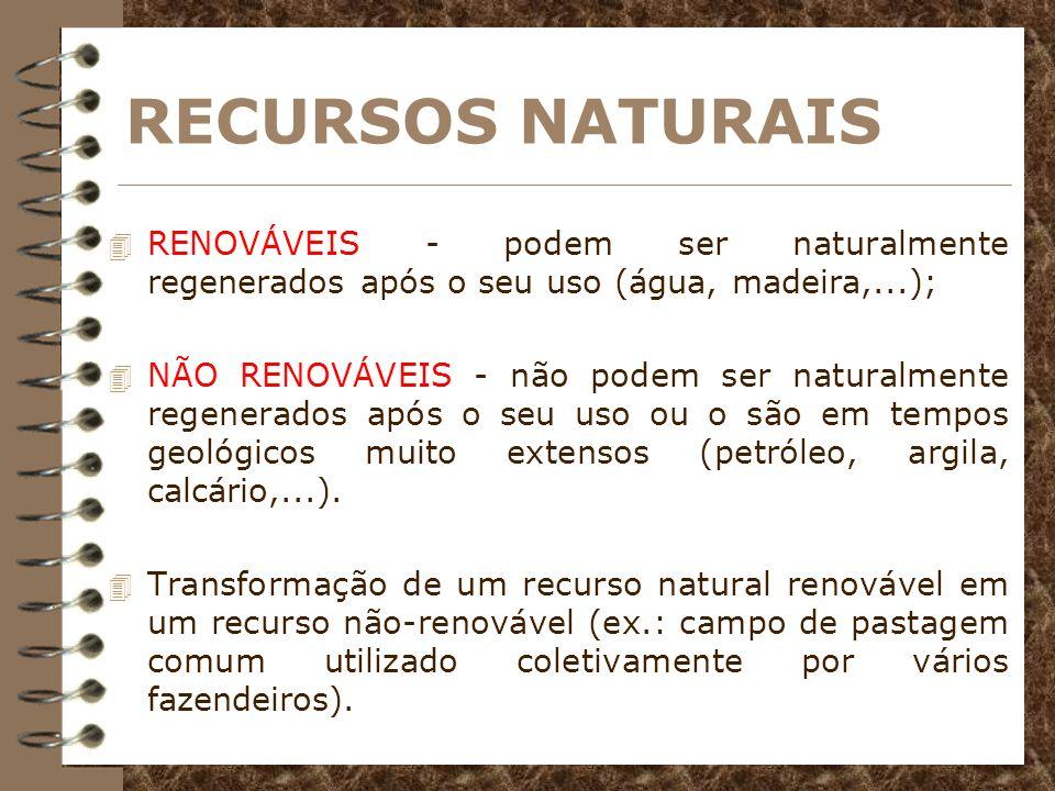 RECURSOS NATURAIS RENOVÁVEIS - podem ser naturalmente regenerados após o seu uso (água, madeira,...);