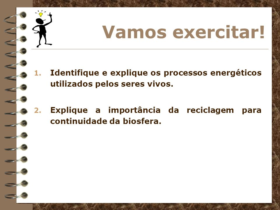 Vamos exercitar!Identifique e explique os processos energéticos utilizados pelos seres vivos.