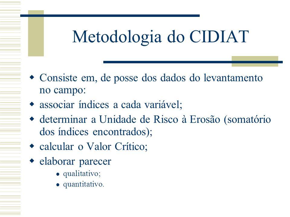 Metodologia do CIDIAT Consiste em, de posse dos dados do levantamento no campo: associar índices a cada variável;