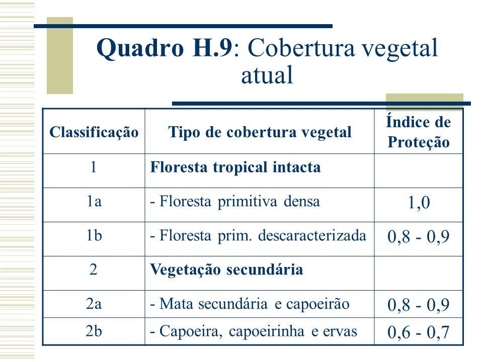 Quadro H.9: Cobertura vegetal atual