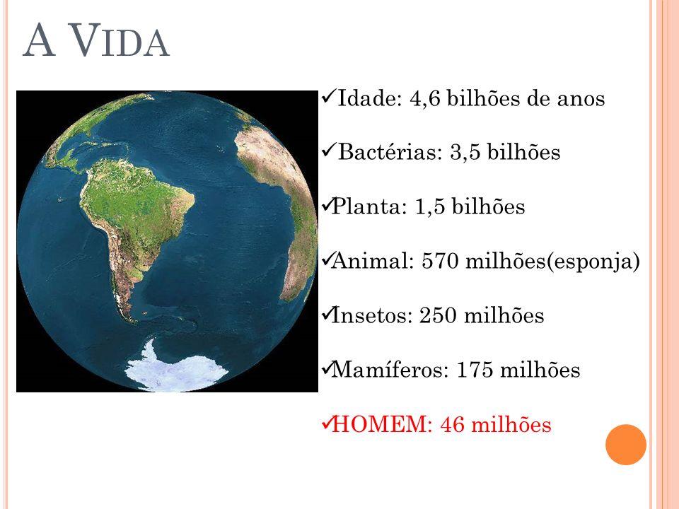 A Vida Idade: 4,6 bilhões de anos Bactérias: 3,5 bilhões