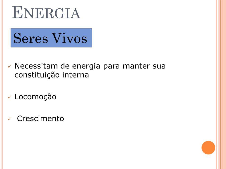 Energia Seres Vivos. Necessitam de energia para manter sua constituição interna.