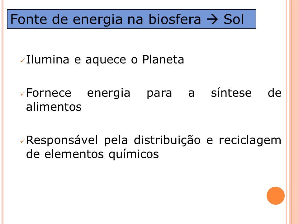 Fonte de energia na biosfera  Sol