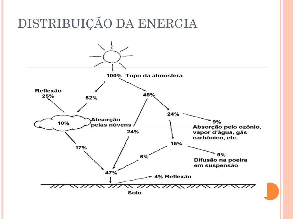 DISTRIBUIÇÃO DA ENERGIA