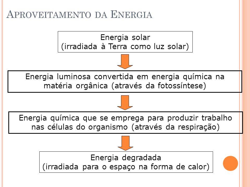 Aproveitamento da Energia