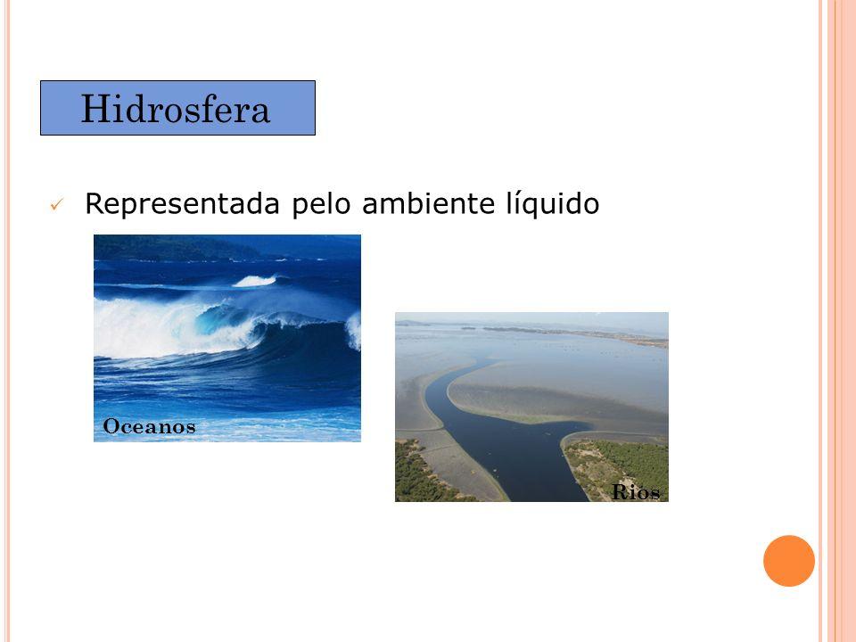 Hidrosfera Representada pelo ambiente líquido Oceanos Rios