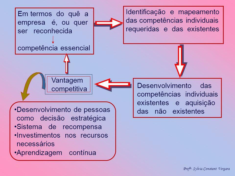 Identificação e mapeamento das competências individuais