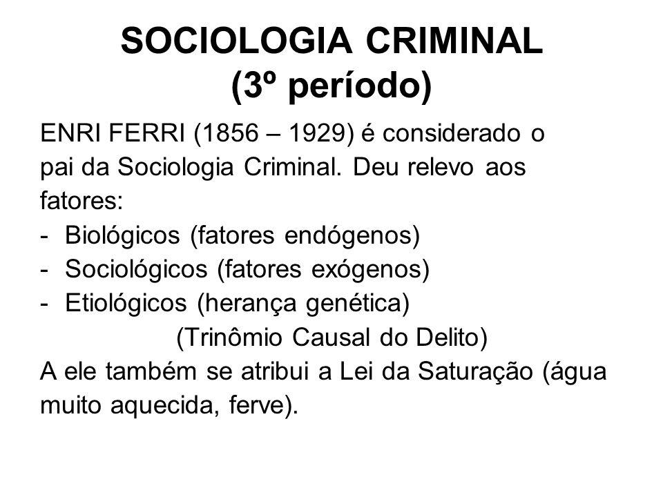 SOCIOLOGIA CRIMINAL (3º período)