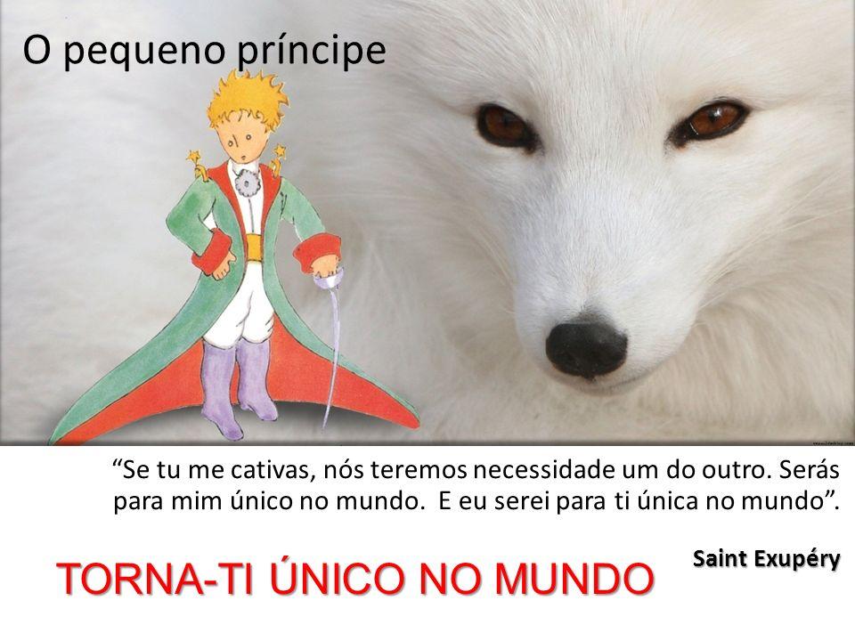 O pequeno príncipe TORNA-TI ÚNICO NO MUNDO